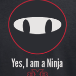 Little Ninjas logo (2014)
